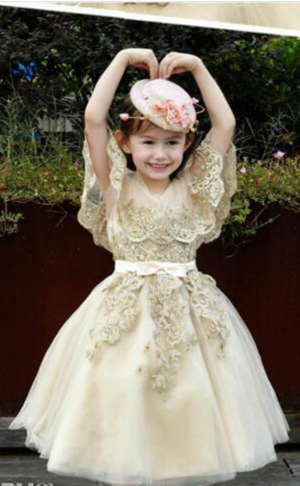 e4072a1af43f Princess Chamapgne Applique Lace Girl s Pageant Dresses Princess ...